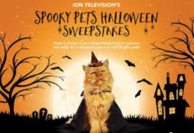 ION Television Spooky Selfie Sweepstakes 2020