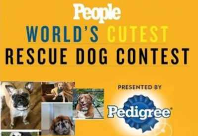 People World's Cutest Rescue Dog Contest